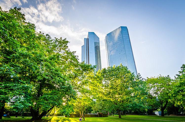 Ein Park in Frankfurt am Main mit Ausblick auf die Skyline