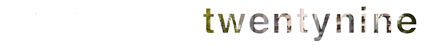 Amadeus twentynine Logo